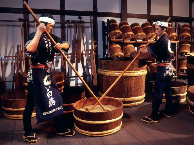 Kobe sightseeing Tour sake Brewery Japan