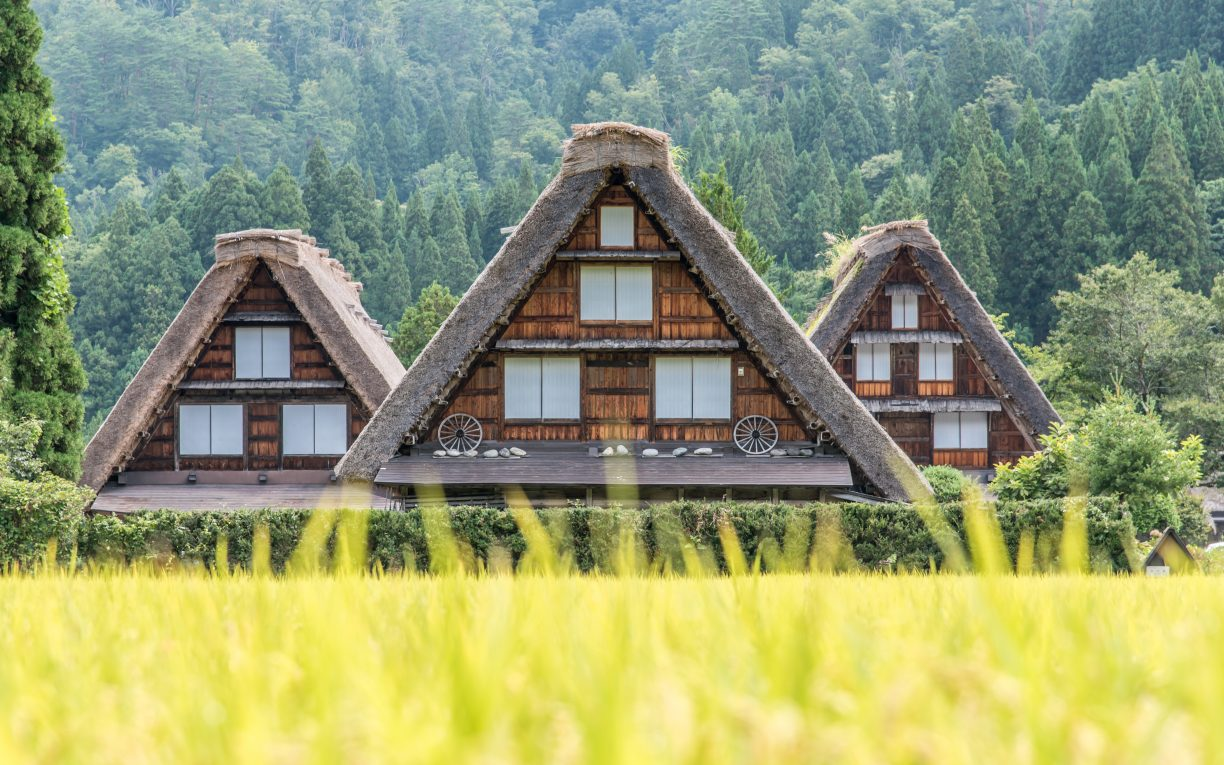 Rice Farm Shirakawago Japan