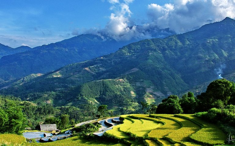 Step fields Sapa Vietnam