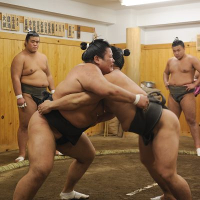 Sumo – History and Facts