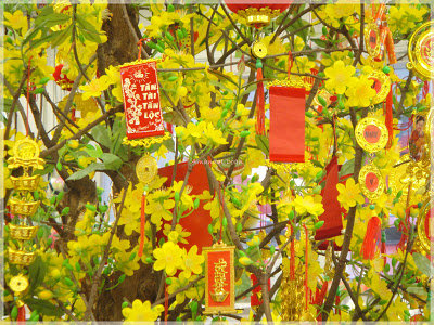 Tet flowers new year vietnam
