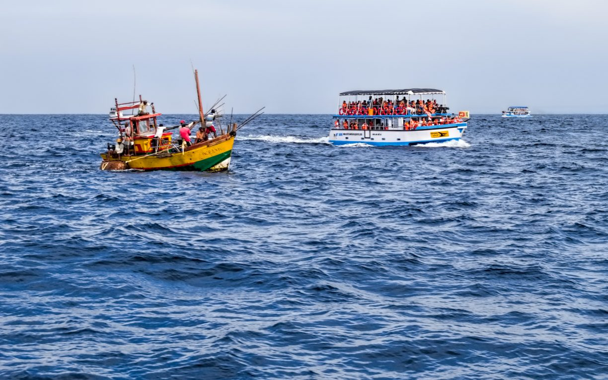 whale watching boats marissa sri lanka