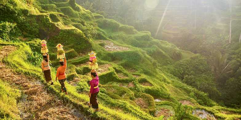 trekking mountains bali indonesia